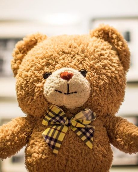 TEDDY-LAND-GUEST-FEATURE-BLOG-IMAGE