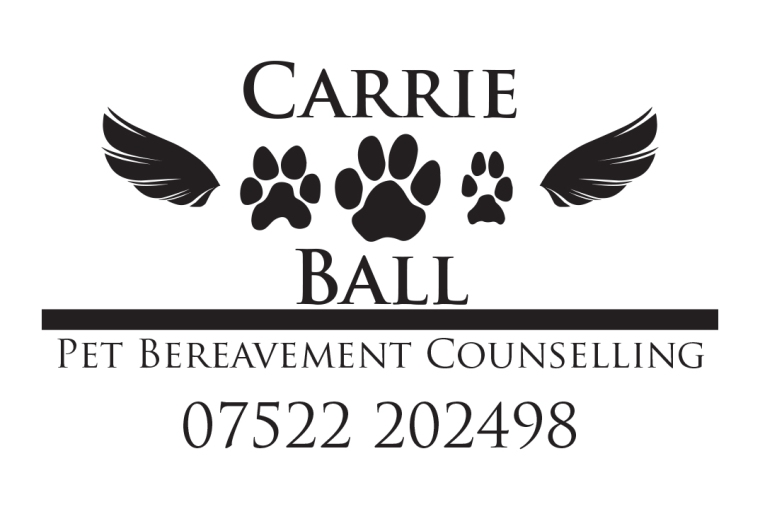 Carrie Ball Business Card new 2018 front[1859]